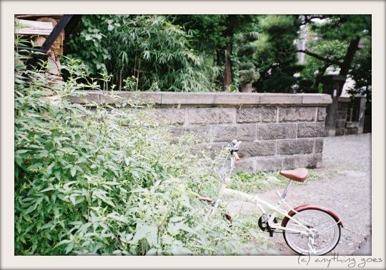 summer scene02