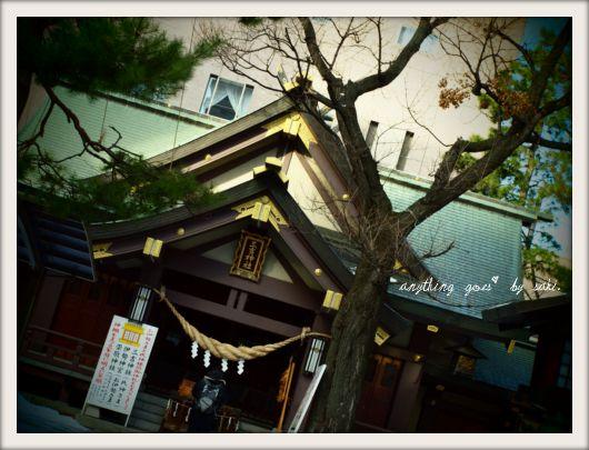 miyoshi01.jpg