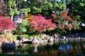 日本庭園①