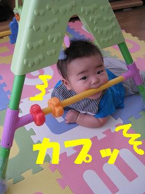 IMG_3431.jpg