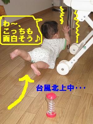IMG_4703.jpg