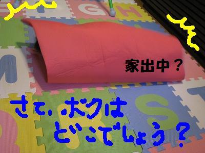 MG_4172.jpg