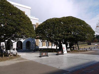 shiinomi1.jpg
