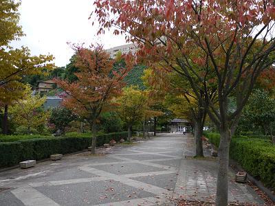 tenjinmachiryokuchi.jpg