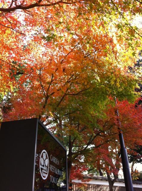 IMG_3406徳川園