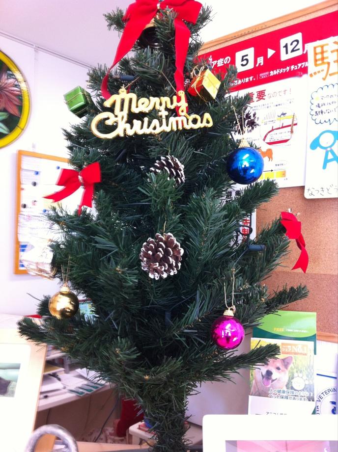 IMG_1869クリスマスツリー
