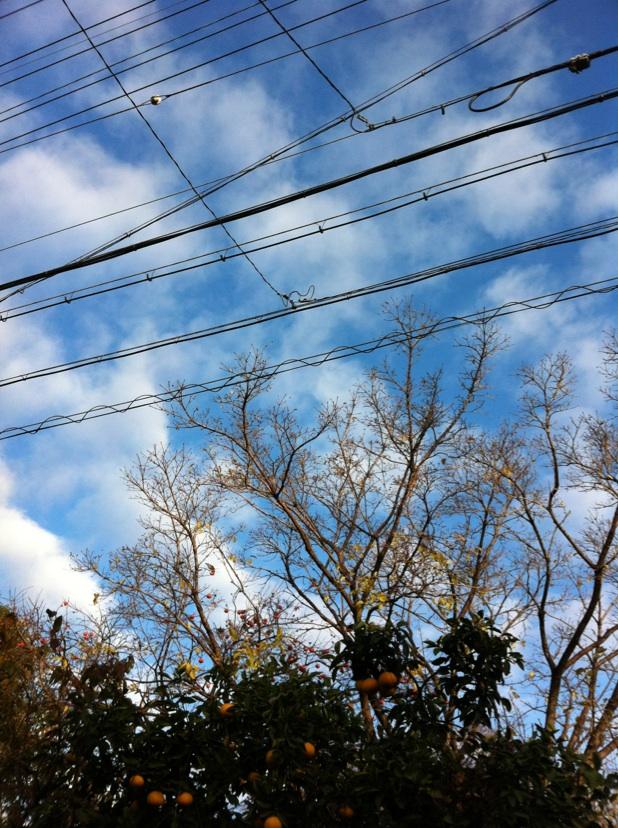 IMG_9381雲
