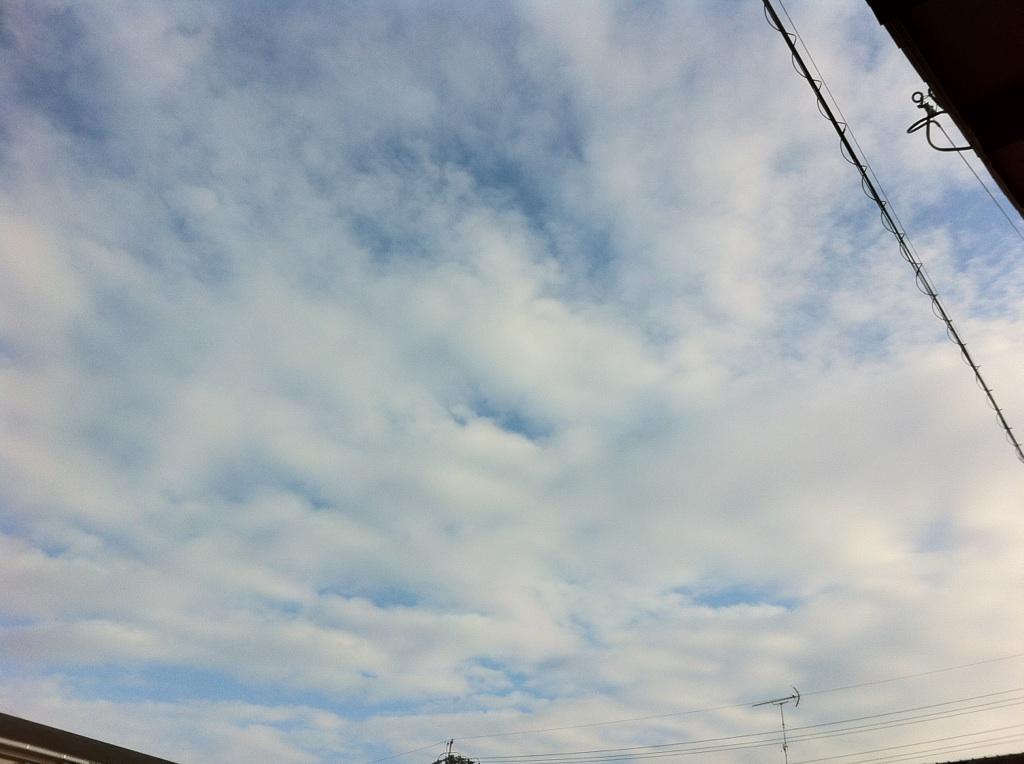 IMG_5176空