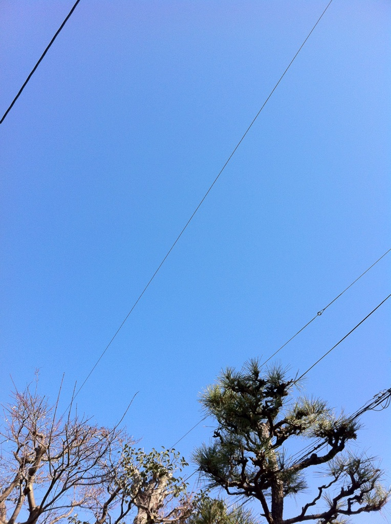 IMG_8051空