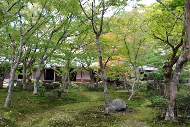 2011kyouto39