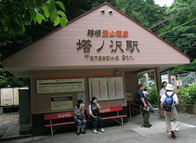 shixtuseikaen1