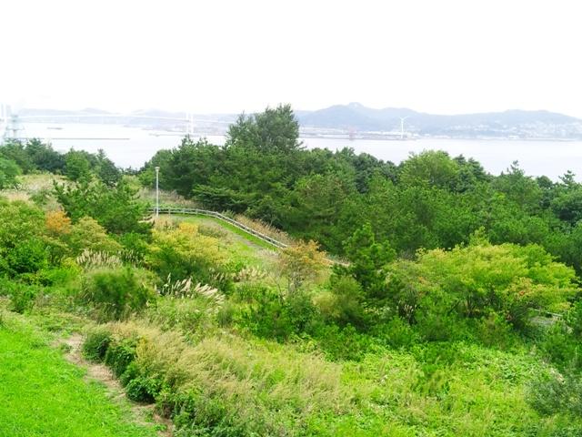 白鳥湾展望台遊歩道