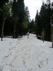 御嶽山1 (1)