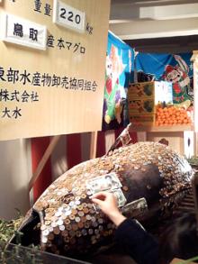 $芦屋あきボディケア official blog-えべっさんマグロ