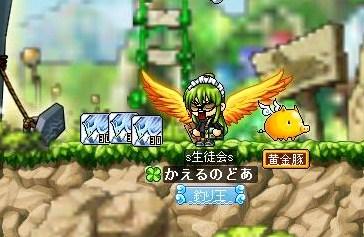 Maple100814_173522.jpg