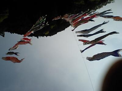 20110430和田峠裏.JPG