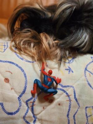 I am Spider-Man☆