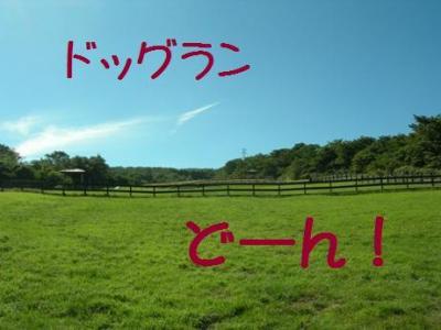 fujiguri-7.jpg
