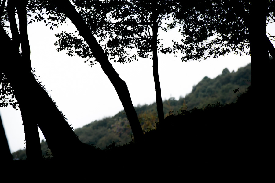 20131103-DSC_0160.jpg