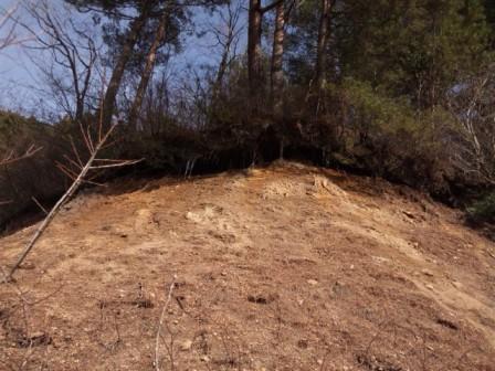 201203201442林道脇の斜面うえに長いつらら