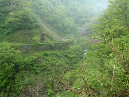 021林道分岐の橋、ここから下の沢沿いへ