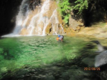 H24.8.26岩倉川0829泳ぐディジー