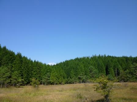 20121011 005 今日の黒の田