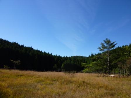 20121024 035湿原