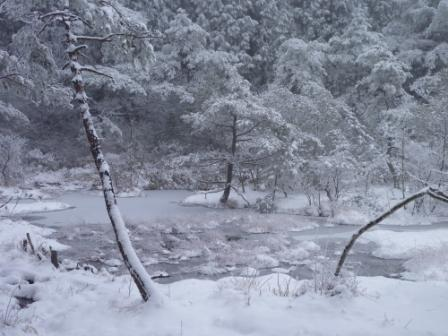 20121211 11凍っている