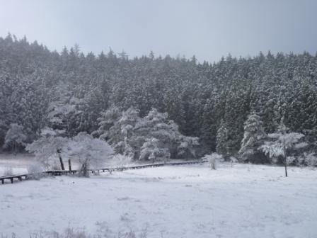 20121211 12黒の田の雪
