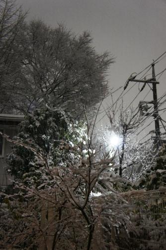 20110214雪景色①