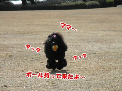 005_20110227151057.jpg