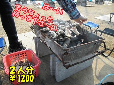 011_20110206214709.jpg