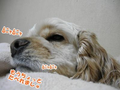 015_20110227153006.jpg