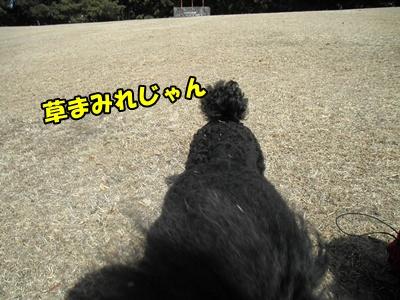 018_20110227151146.jpg