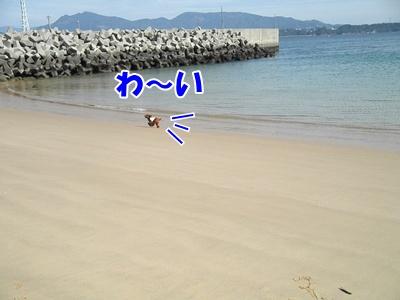 021_20110224223421.jpg
