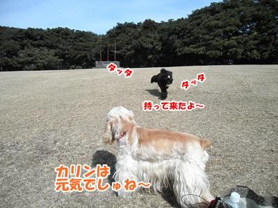 021_20110227151056.jpg