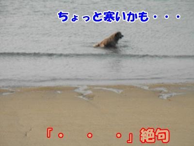 023_20110207225345.jpg