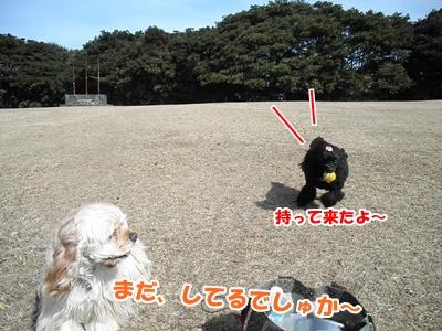 023_20110227151056.jpg