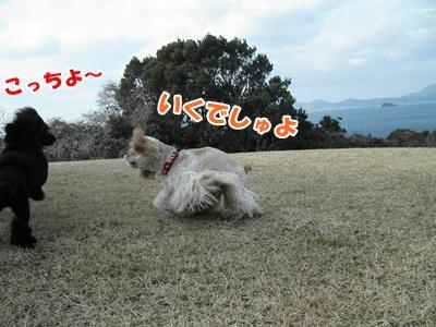 025_20110130150616.jpg
