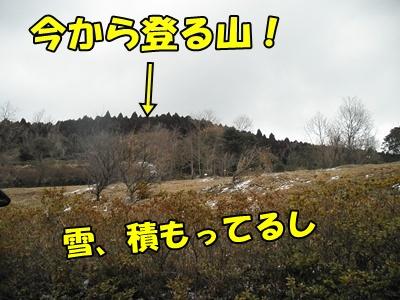 027_20110215210109.jpg
