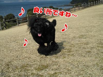030_20110131195452.jpg