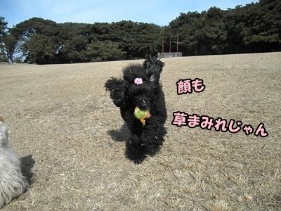 030_20110227151145.jpg