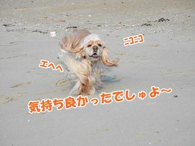 033_20110207225459.jpg