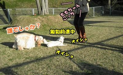 035_20110306120827.jpg