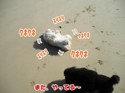 036_20110224232058.jpg