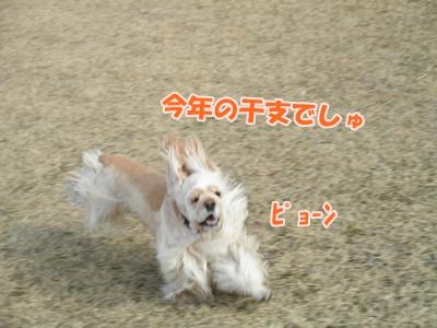 047_20110130150710.jpg