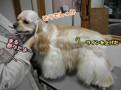 058_20110227124456.jpg
