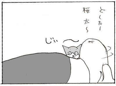 372-2.jpg