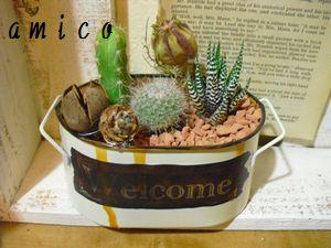 2012_0221_184523-CIMG1826.jpg